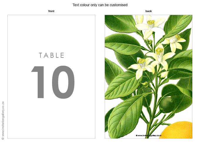 Table number - Botany: invitation-gallery-wedding-stationery-MPC001-028-01.png
