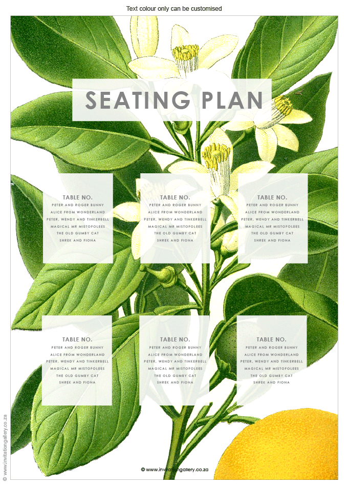 Seating plan - Botany: invitation-gallery-wedding-stationery-MPC001-028-SEP01.png