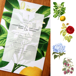 Wedding Invitation: Botany, designed by Participating studio: Dusty Mountain