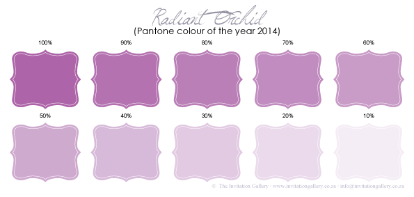 Colour palette: Radiant Orchid